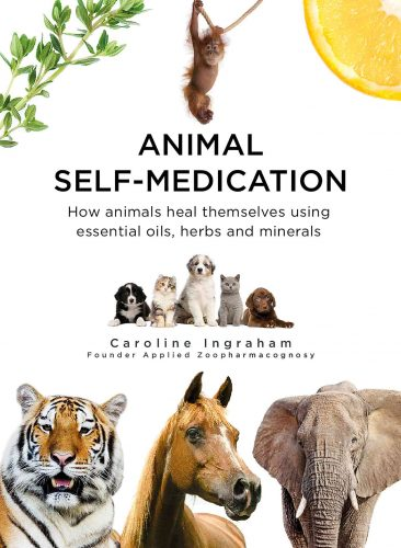 Animal Self-Medication By Caroline Ingraham - ISBN 9780952482765
