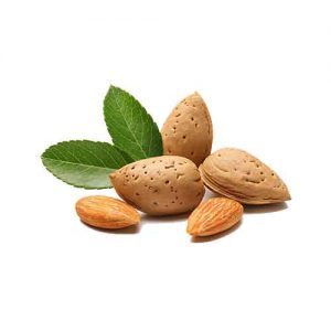 Bitter Almond Essential Oil