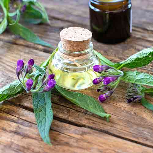Comfrey In Almond Oil